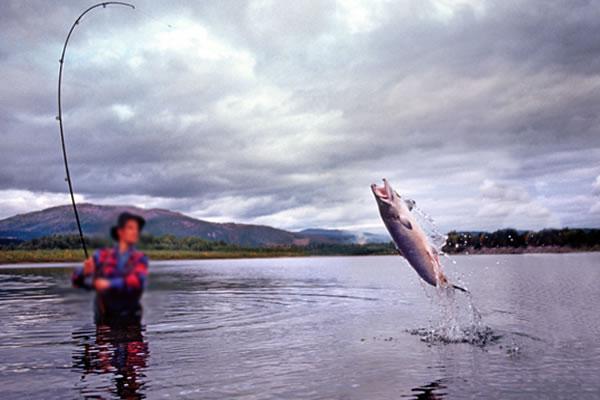 marcelo crivella investigacao ministerio pesca
